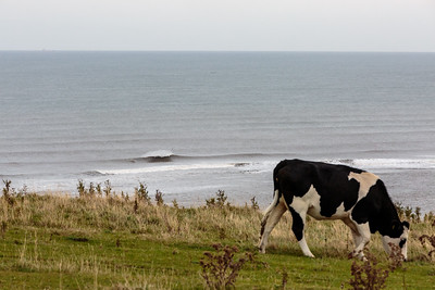 This is (Surfing in) Yorkshire