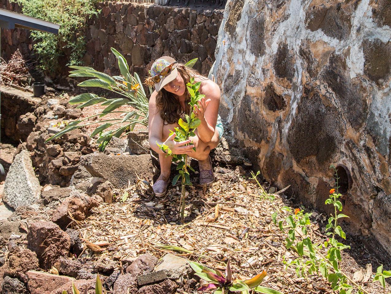 Surfrider Oahu: Surfblitz Kaimuki Part 2