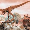Rusty T-Rex