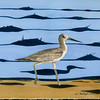 Yellowlegs Small