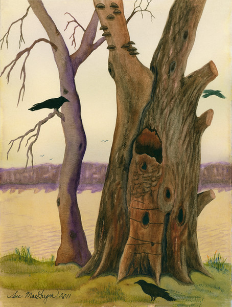 Joye's Tree Crows
