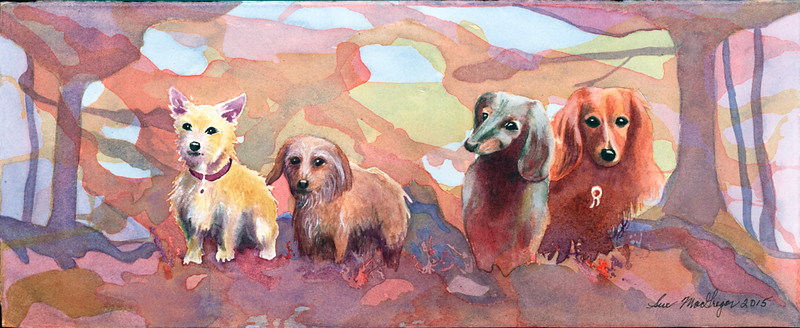Dogs–SOLD