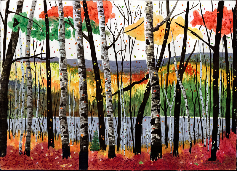Birches With a Pond