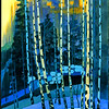 Birch Forest2–SOLD