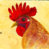 Rooster2–SOLD