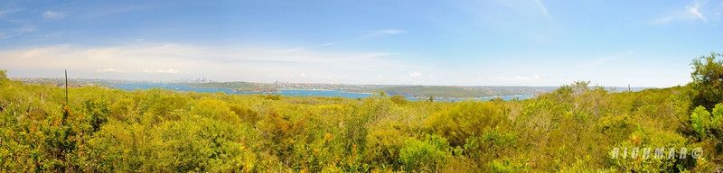 Not so scenic outlook from the North Head hike