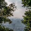 TAIPEI. VIEW FROM ELEPHANT MOUNTAIN AT TAIPEI. [4]