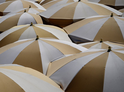 Umbrellas of Cannes