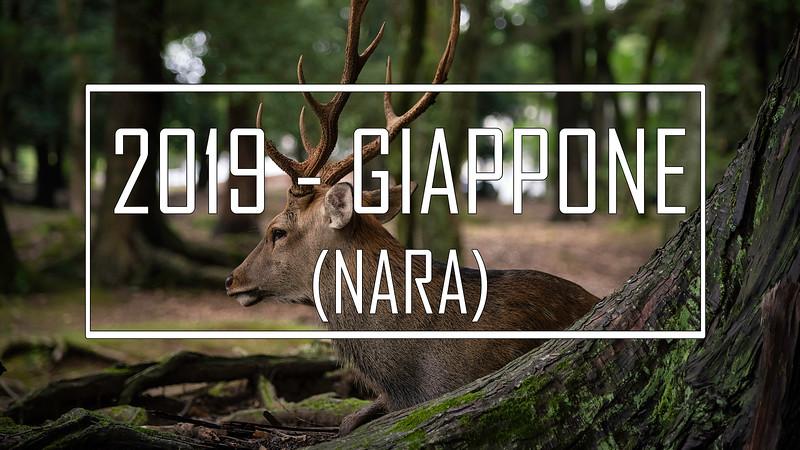 2019 - Giappone: Nara