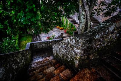 The Garden In the Rain