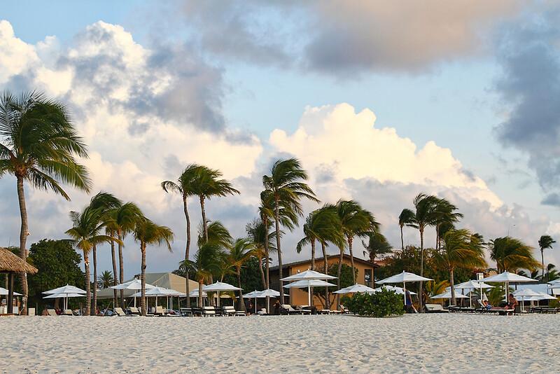 Umbrellas in the sun...Eagle Beach, Aruba-2104