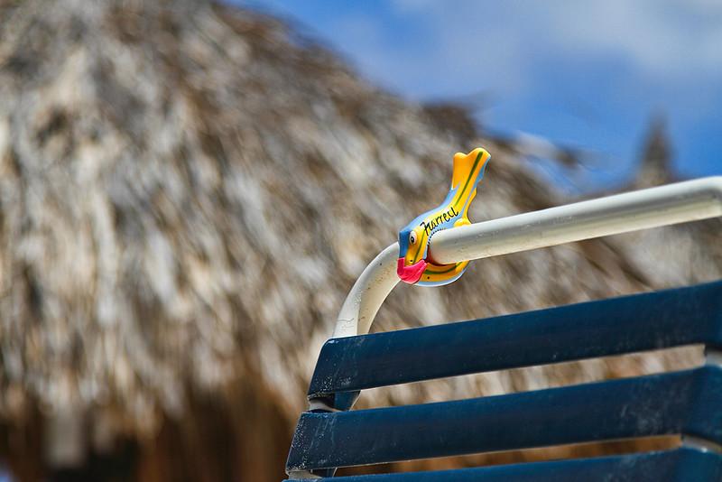 Towel clip waiting for its' towel...Casa del Mar, Aruba-2014