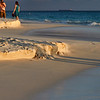 Shadows in the sand...Casa del Mar, Aruba-2014