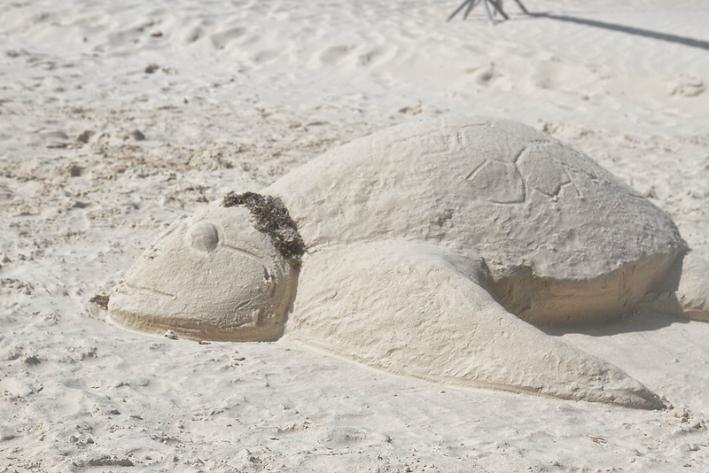 Kids creating a Sea Turtle from sand on Eagle Beach, Aruba...complete with sun shades-2014