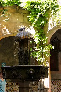 BARCELONA, SPAIN-CITY TOUR 7/21/14...Fountain inside Cathedral de Santa Eulalia