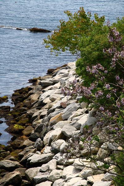 """<center>IMG#1228 Rocky Edges of """"Cliff Walk"""" Newport, Rhode Island<center>"""