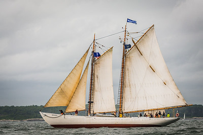 Bowdoin Schooner at Sea
