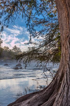 guadalupe mist