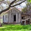Berry Springs Homestead