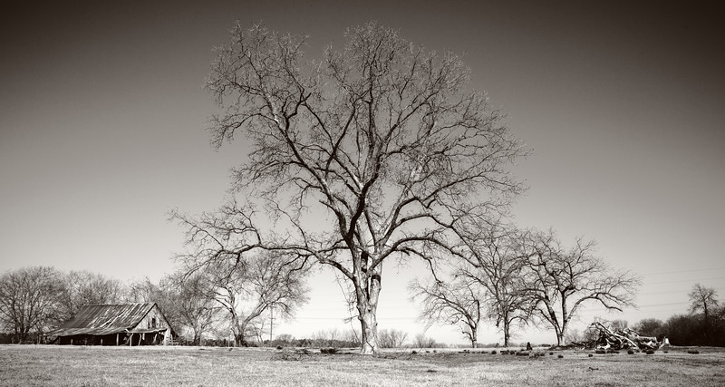 Feb 24-untitled shoot-