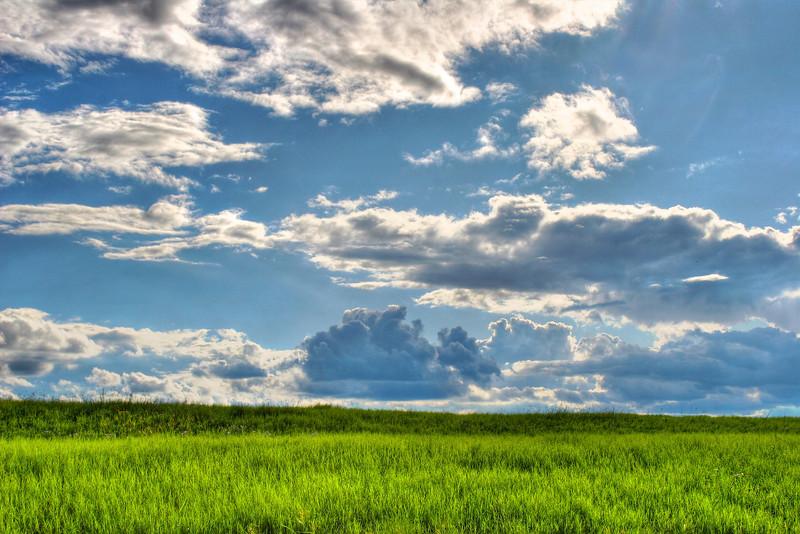 simple landscape smithville texas