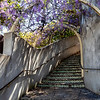 Wisteria Stairway