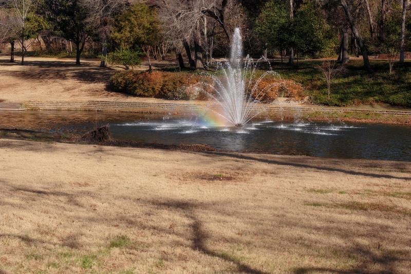 Jan 17-Dallas, TX-8607