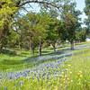 Apr 13-Dallas, TX-1804