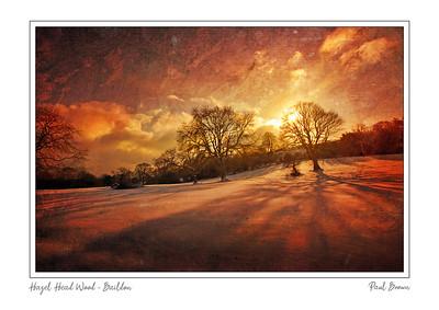 Hazel Head Wood Baildon Framed A4