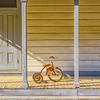 Rusty_Vineyard_School-Medium_Antique-Color_Detail-Oct082015_0017