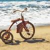 Rusty_Capitola_Beach_Oct122015_0156