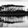 western Lake Pines