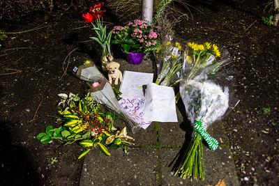 Candlelight Vigil for Lynn Heimsoth-  0184