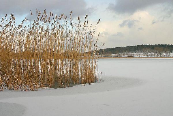 Fahrländersee in February, Fahrland (Berlin), Germany.