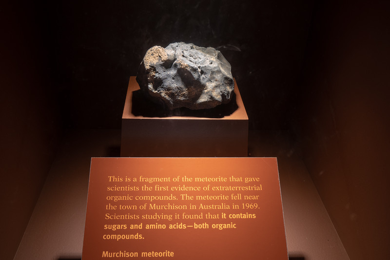 Murchinson Meteorite at the Field Musuem