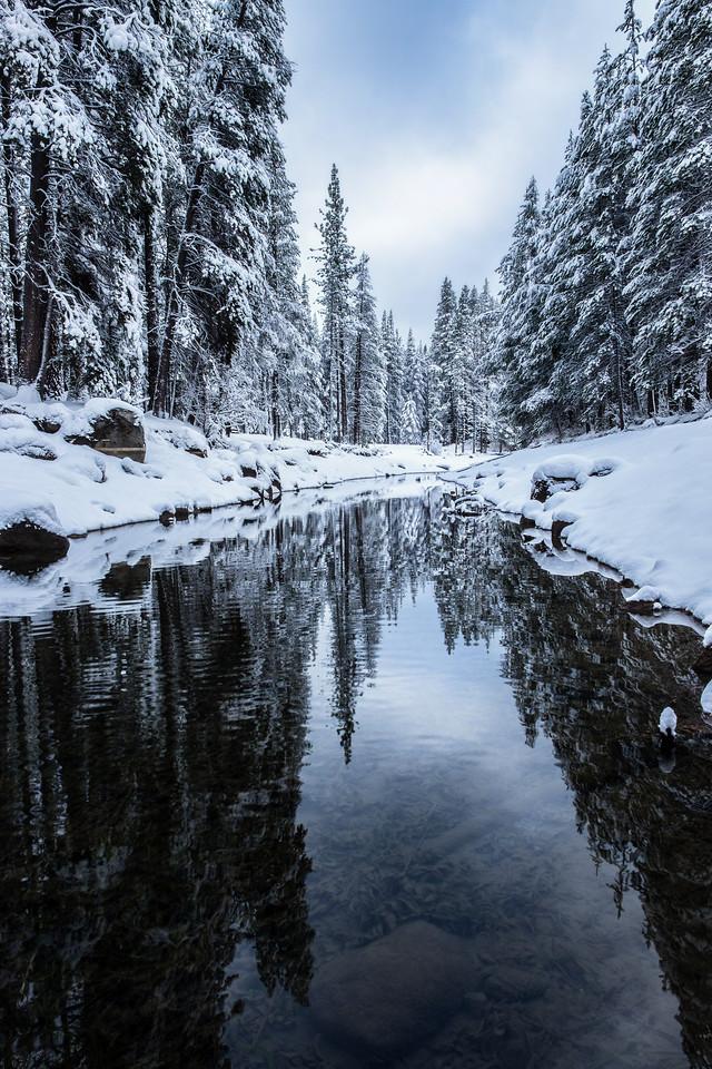 Snowy Destiny