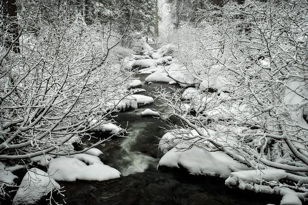 Down The Snowstream