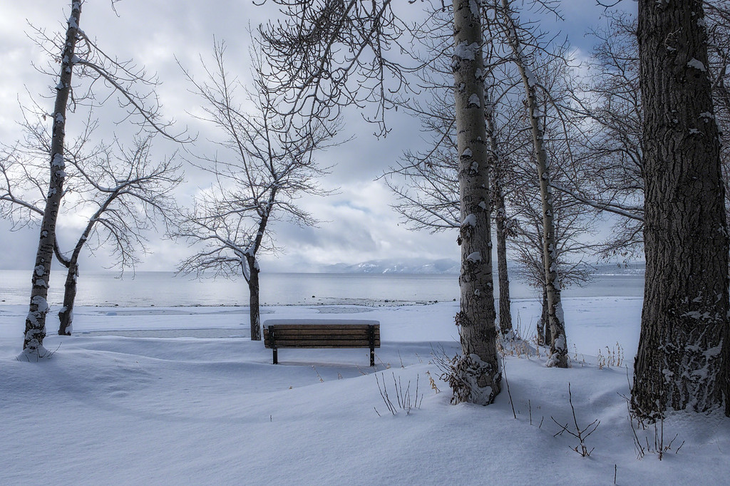 The Unbearable Beauty of Bench