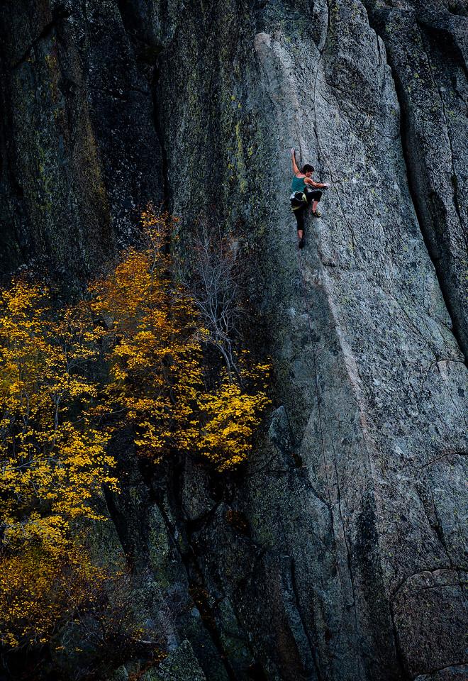 Climb Up Fall