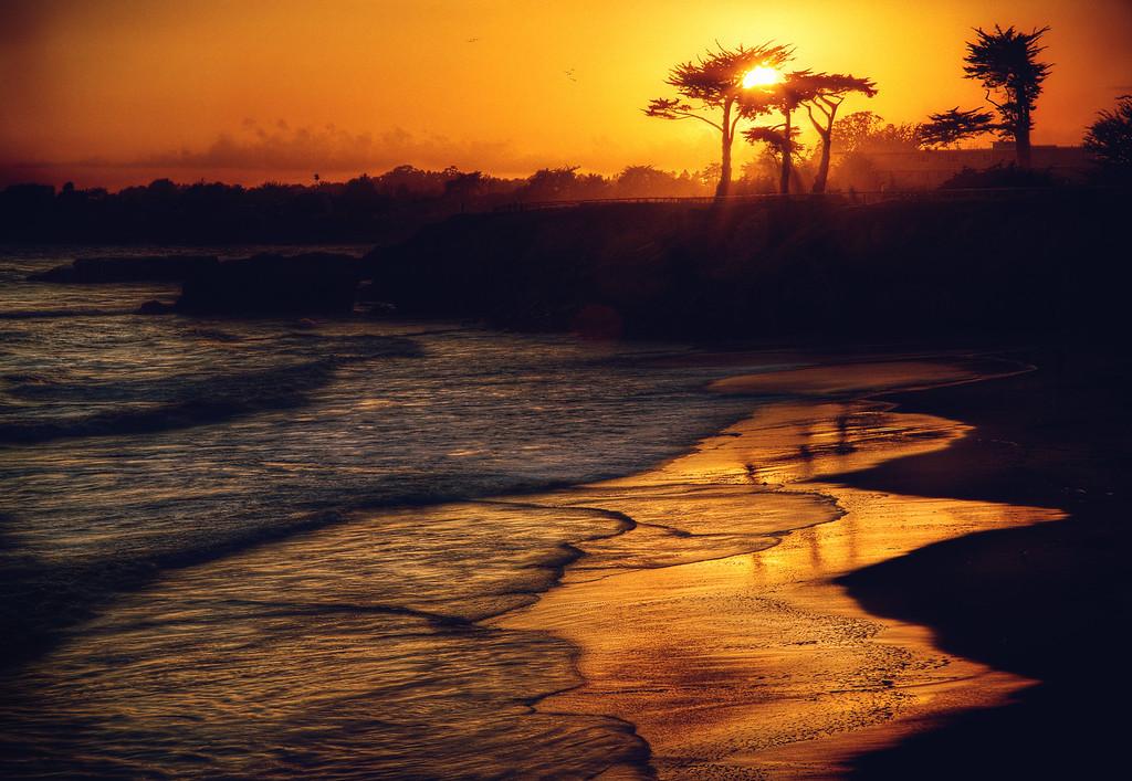 That Sunset