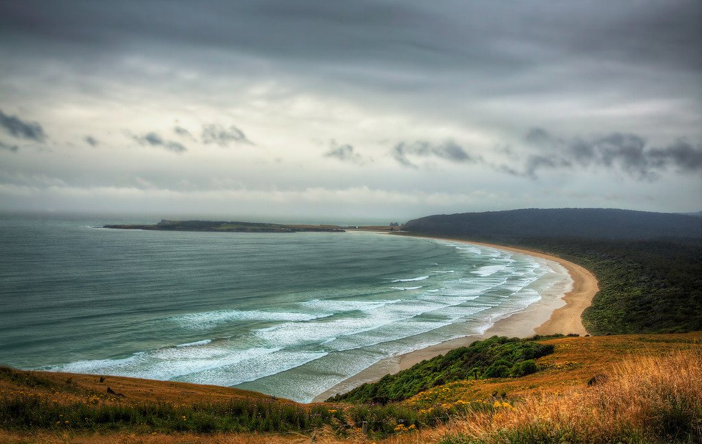 On the Shores of the Catlins