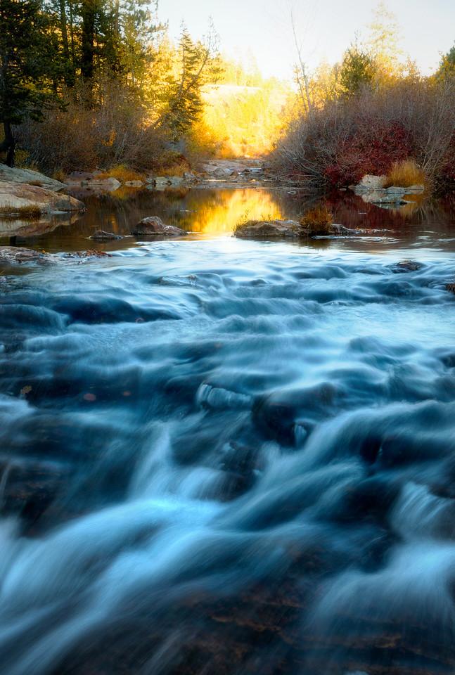 The Cool Golden Creek