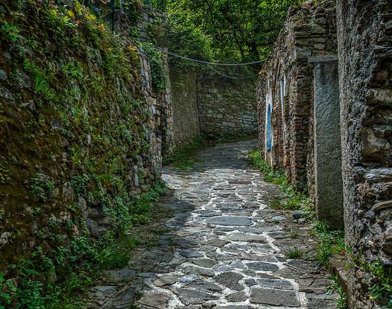 Trail in Monterosso