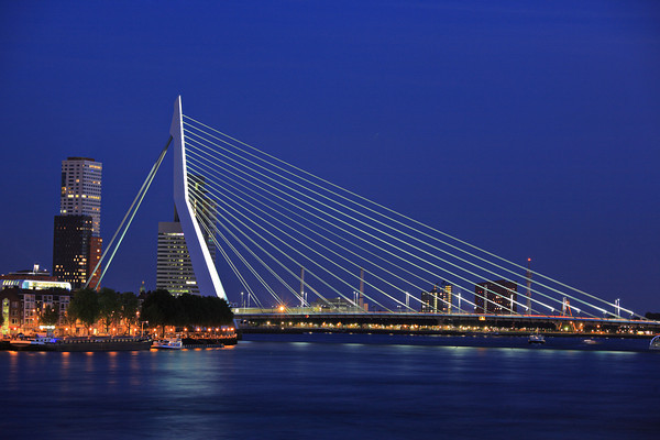 Erasmus bridge on Meuse river, Rotterdam, Holland at night