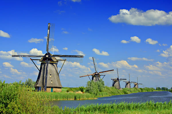 Windmills in Kinderdijk, Holland.