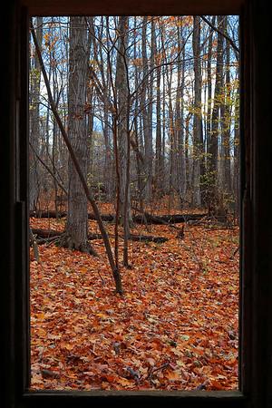 Autumn Through the Doorway