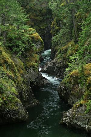 Stream in Little Qualicum Falls