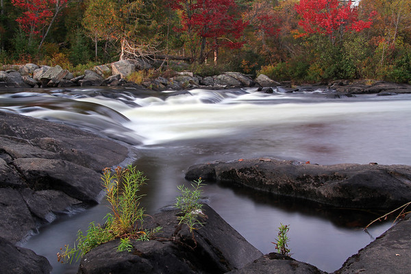 Autumn at a river in Whitney, Ontario.