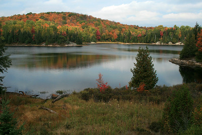 Fall Colours in Algonquin Park, Ontario.