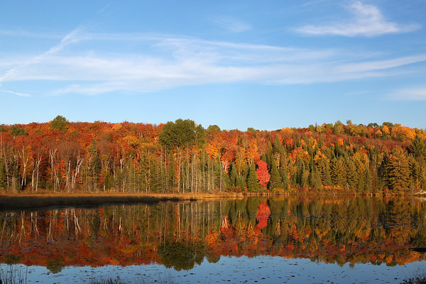Autumn at Hay Lake, Ontario